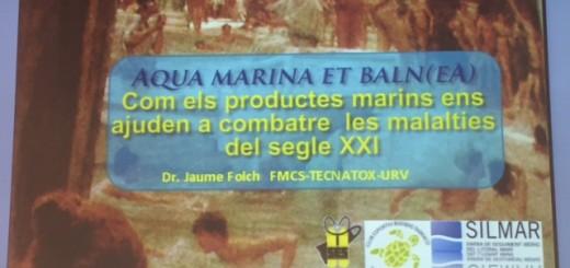 Jaume Folch - còpia